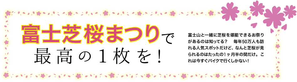 富士芝桜まつりで最高の1枚を!