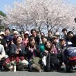 Team9℃