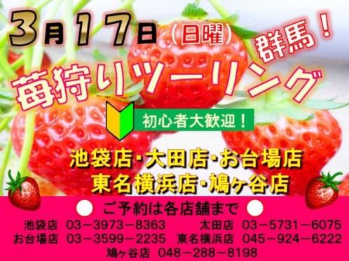 kizuki_20130317_touring