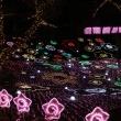 冬のおすすめツーリング先! 関東最大、550万球の光の祭典 さがみ湖イルミリオン