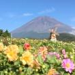 """""""天空のダリア祭り2016"""" 富士山麓のお花畑を見に行きましょう!"""