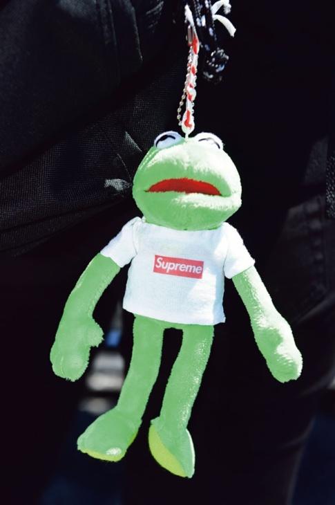 カエルのマスコットには手作りTシャツを着せた